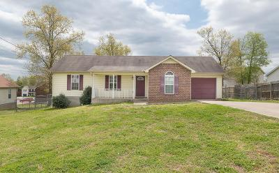 Smyrna Single Family Home For Sale: 535 Wildwood Dr