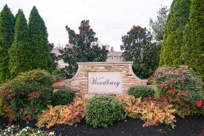 Nashville Condo/Townhouse For Sale: 1058 Woodbury Falls Dr #1058