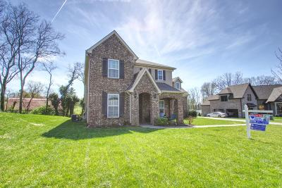 Hendersonville Single Family Home For Sale: 127 A Windmill Point Cir