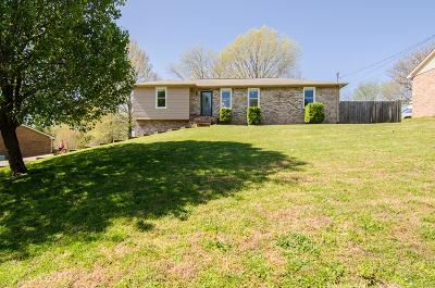 Davidson County Single Family Home For Sale: 310 Mystic Hill Dr