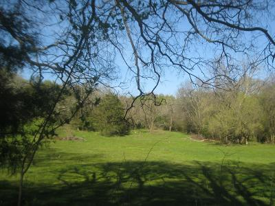 Wilson County Residential Lots & Land For Sale: Old Trammel Rd