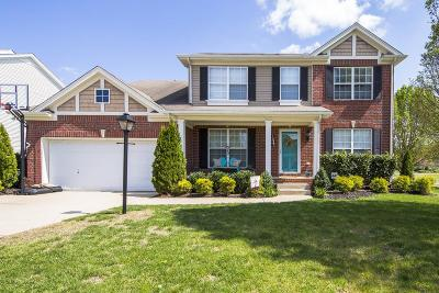 Sumner County Single Family Home For Sale: 159 Vintage Cir