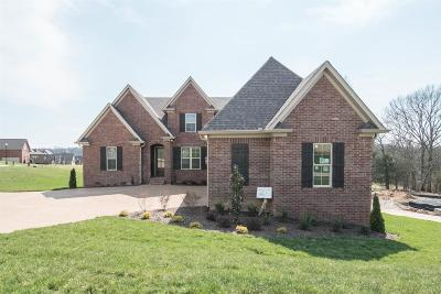 Sumner County Single Family Home For Sale: 2003 Hawkwell Circle