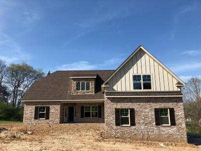 Mount Juliet Single Family Home For Sale: 5625 Benders Ferry Road