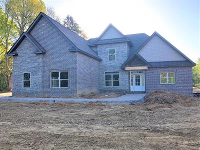 Mount Juliet Single Family Home For Sale: 206 Lake Haven