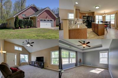 Clarksville Single Family Home For Sale: 427 Lillie Belle Lane
