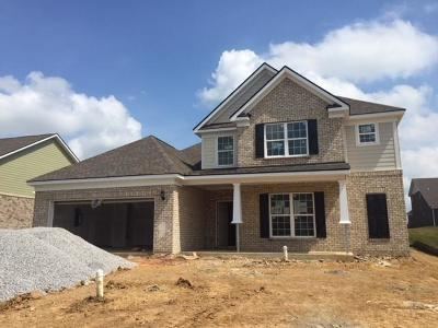Spring Hill  Single Family Home Active - Showing: 7003 Triton Road - #335