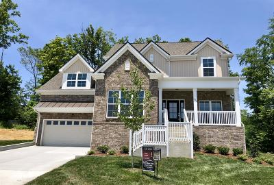 Hendersonville Single Family Home For Sale: 774 Villa Way