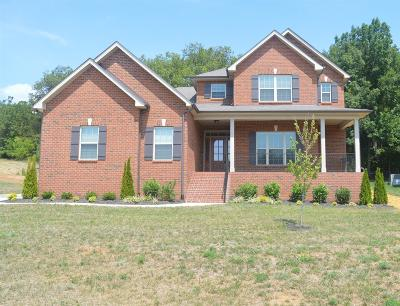 Rutherford County Single Family Home For Sale: 632 Twin View Dr