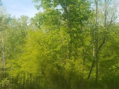 Lobelville Residential Lots & Land For Sale: 3 Britt Landing Rd W Of