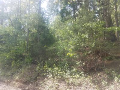Lobelville Residential Lots & Land For Sale: 37 Blue Hole Rd