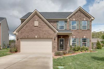 Rutherford County Single Family Home For Sale: 1314 Amboress Ln