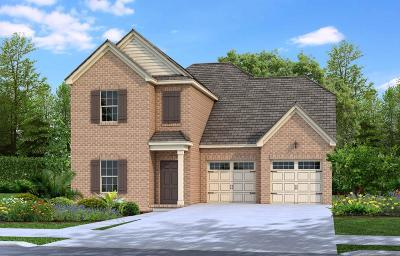 Davidson County Single Family Home For Sale: 155 Lightwood Drive - Lot 20