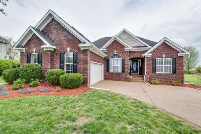 Williamson County Single Family Home For Sale: 2816 Iroquois Dr