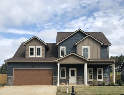 Christian County, Ky, Todd County, Ky, Montgomery County Single Family Home For Sale: 58 Sango Mills