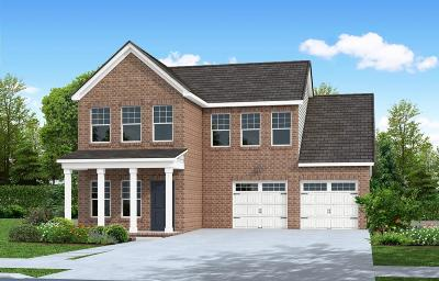 Davidson County Single Family Home For Sale: 166 Lightwood Drive - Lot 3