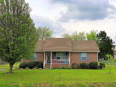 Sumner County Single Family Home For Sale: 113 Cora St