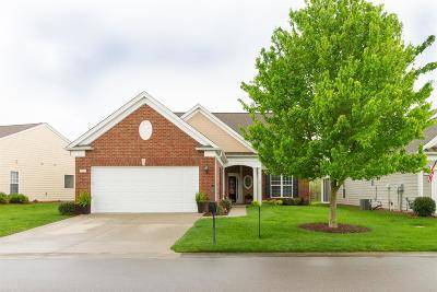 Mount Juliet TN Single Family Home For Sale: $460,000