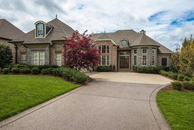 Williamson County Single Family Home For Sale: 9735 Amethyst Ln