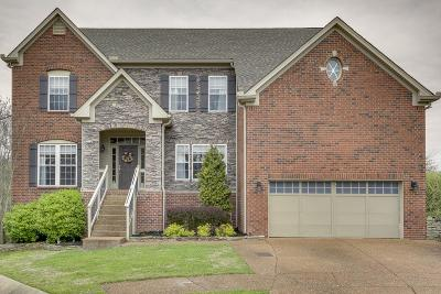 Davidson County Single Family Home For Sale: 1220 Beautiful Valley Ct