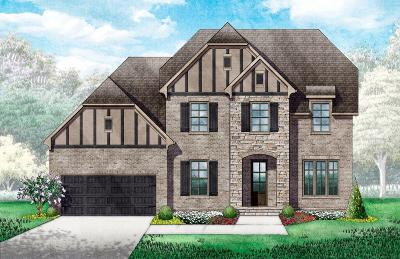 Davidson County Single Family Home For Sale: 568 Summit Oaks Ct, Lot 19