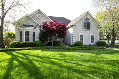 Williamson County Single Family Home Under Contract - Showing: 500 Dunwoody Ct
