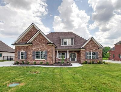 Single Family Home Active - Showing: 7981 Richpine Dr- Lot 163