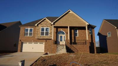 Clarksville Single Family Home For Sale: 95 C Griffey Estates