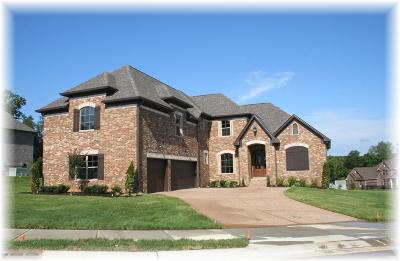 Hendersonville Single Family Home Active - Showing: 1076 Tower Hill Ln - Lot 23