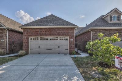 Nolensville Condo/Townhouse For Sale: 317 Thesing Ct