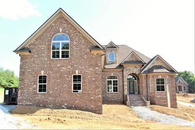 Mount Juliet Single Family Home For Sale: 8 Couchville Pike #8-C