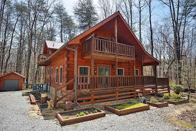 Altamont Single Family Home For Sale: 1625 Hideaway Cabin Rd