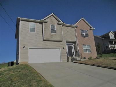 Lavergne Single Family Home Under Contract - Showing: 102 Lyndhurst Dr