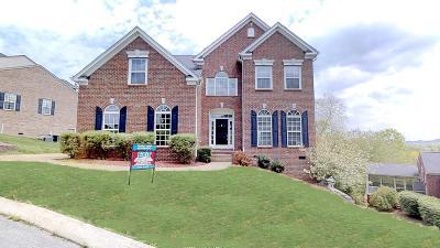 Nashville Single Family Home For Sale: 211 Riverbend Ln