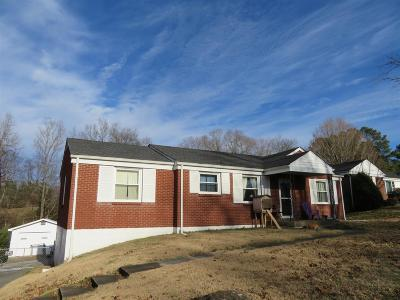 Clarksville Single Family Home For Sale: 1674 Valley Rd