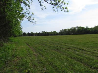 Mount Juliet Residential Lots & Land For Sale: 7250 Couchville Pike (Lot 2)