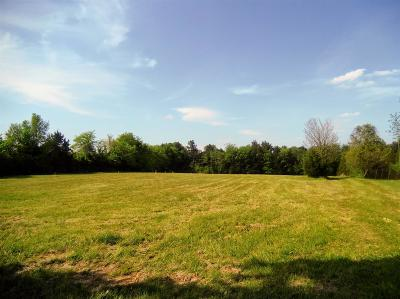 Mount Juliet Residential Lots & Land For Sale: 7238 Couchville Pike (Lot 3)