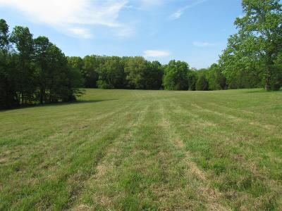 Mount Juliet Residential Lots & Land For Sale: 7272 Couchville Pike (Lot 9)