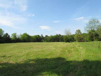 Mount Juliet Residential Lots & Land For Sale: 7158 Couchville Pike (Lot 11)