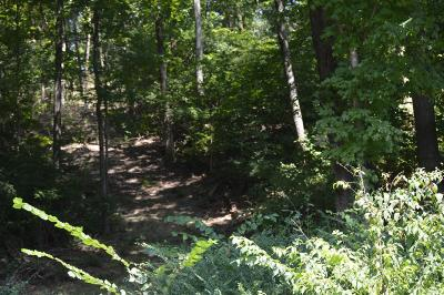 Nashville Residential Lots & Land Under Contract - Not Showing: 2014 Otter Valley Ln