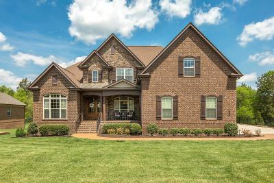 Nolensville Single Family Home For Sale: 2090 Delaware Dr