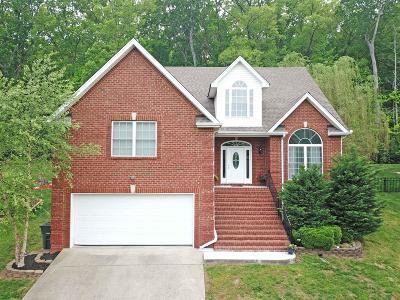 Smyrna Single Family Home Active - Showing: 422 Spring Hill Dr