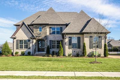 Spring Hill Single Family Home For Sale: 4007 Cardigan Lane (265)