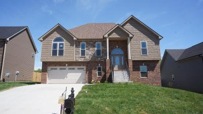 Clarksville Single Family Home Under Contract - Showing: 95 A Griffey Estates