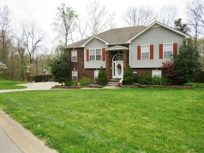Christian County, Ky, Todd County, Ky, Montgomery County Single Family Home Under Contract - Showing: 3449 N Henderson Way