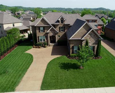 Spring Hill Single Family Home Under Contract - Showing: 1794 Witt Way Dr