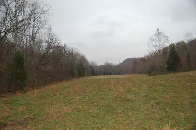Robertson County Residential Lots & Land For Sale: Smiley Hollow Rd
