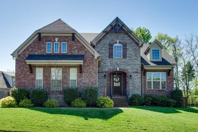 Hendersonville Single Family Home Active - Showing: 114 Fountain Brooke Drive