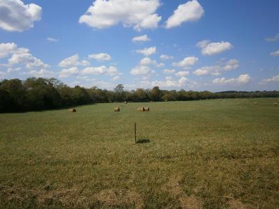 Lebanon Residential Lots & Land For Sale: 5 Murfreesboro Rd