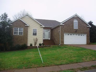 Spring Hill Single Family Home For Sale: 2605 Danbury Cir